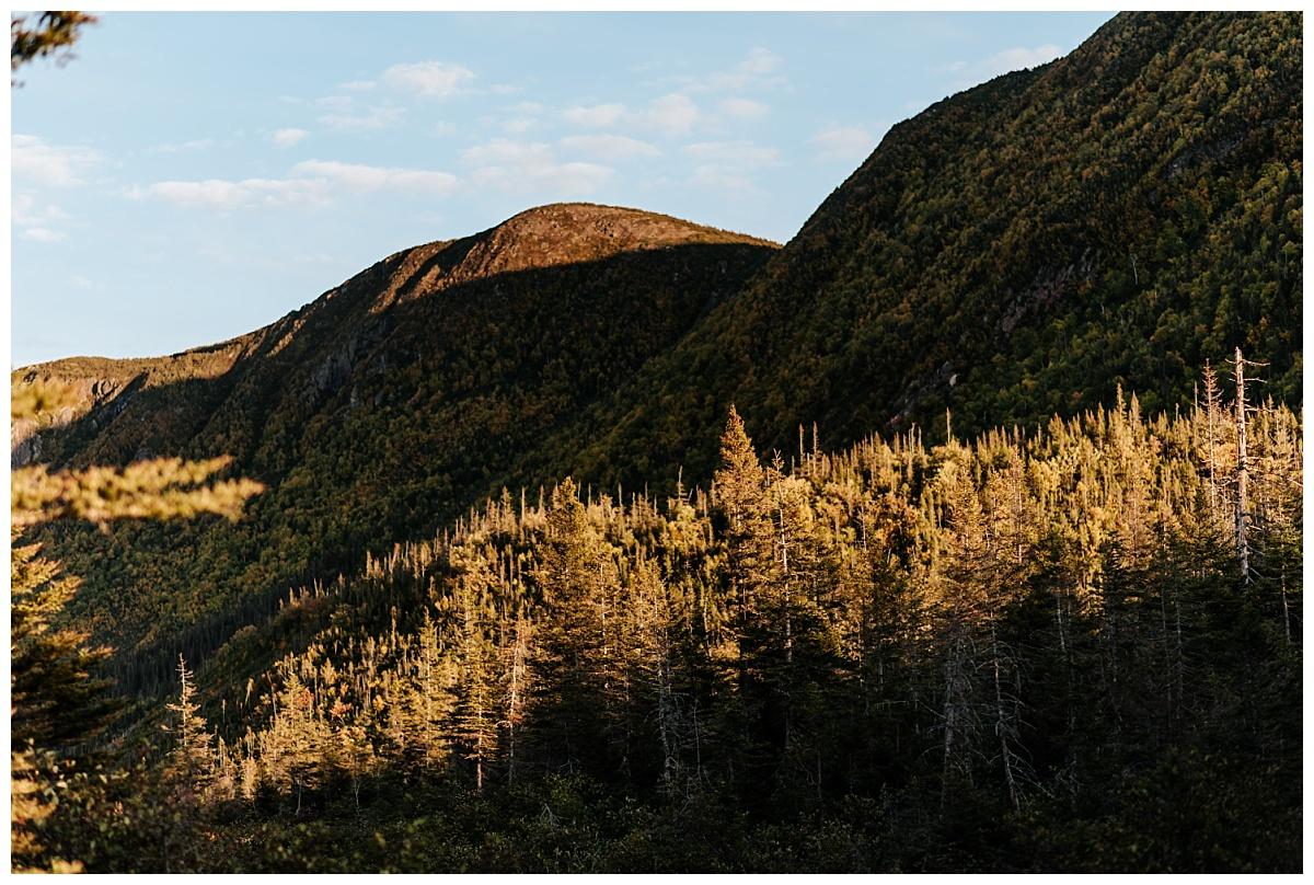 Vue des montagnes du Parc National de la Gaspésie au coucher du soleil alors que les conifères matures sont illuminé.
